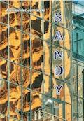 Sandy. Część 2 - Aleksander Janowski - ebook