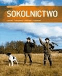 Sokolnictwo. Gatunki, utrzymanie, układanie, polowanie - Marek Cieślikowski - ebook