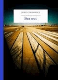 Bez nut - Czechowicz, Józef - ebook