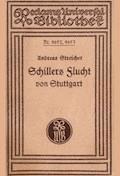 Schillers Flucht von Stuttgart und Aufenthalt in Mannheim von 1782-1785 - Streicher, Andreas - E-Book