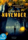 Niemand liebt November - Antonia Michaelis - E-Book