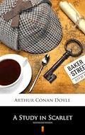 A Study in Scarlet. Illustrated Edition - Arthur Conan Doyle - ebook