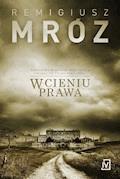 W cieniu prawa - Remigiusz Mróz - ebook