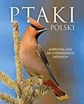 Ptaki Polski - Dominik Marchowski - ebook