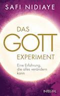 Das Gott-Experiment - Safi Nidiaye - E-Book