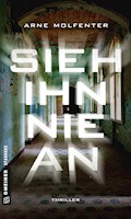 Sieh ihn nie an - Arne Molfenter - E-Book
