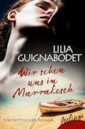 Wir sehen uns in Marrakesch - Lilia Guignabodet - E-Book