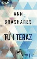 Tu i teraz - Ann Brashares - ebook