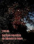 Pustelnia parmeńska. La Chartreuse de Parme - Stendhal - ebook