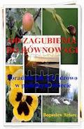 Od zagubienia do równowagi. Jak żyć zdrowo w pędzącym świecie - Bogusław Sztorc - ebook