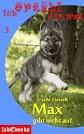 Ich erzähl dir was 3: Max gibt nicht auf - Uschi Zietsch - E-Book