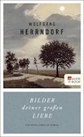 Bilder deiner großen Liebe - Wolfgang Herrndorf - E-Book