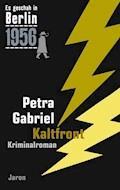 Kaltfront - Petra Gabriel - E-Book