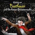 Ludwig van Beethoven und die heisse Silvesternacht - Michael Vonau - Hörbüch