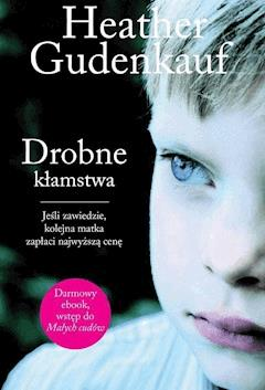 Drobne kłamstwa - Heather Gudenkauf - ebook