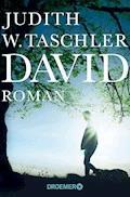 David - Judith W. Taschler - E-Book