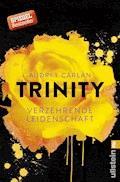 Trinity - Verzehrende Leidenschaft - Audrey Carlan - E-Book