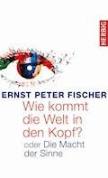 Wie kommt die Welt in den Kopf? - Ernst Peter Fischer - E-Book