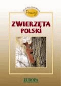 Poznaję zwierzęta Polski. Atlas dla ciekawych  - Dorota Kokurewicz - ebook