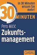 30 Minuten Zukunftsmanagement - Pero Micic - E-Book