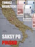 Saksy po polsku - Tomasz Biedrzycki - ebook