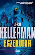 Egzekutor - Jesse Kellerman - ebook