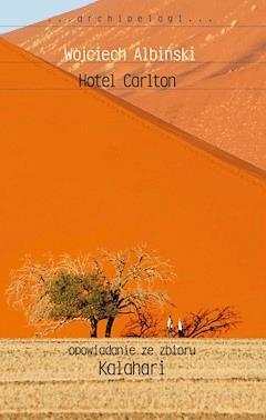 Hotel Carlton - Wojciech Albiński - ebook