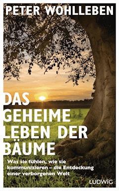 Das geheime Leben der Bäume - Peter Wohlleben - E-Book