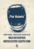 Kraftwerk i muzyczna rewolucja. Mała encyklopedia muzyki electro i electro-funk - Piotr Mulawka - ebook