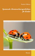 Spannende Abenteuerkurzgeschichten für Kinder - Sandro Hübner - E-Book