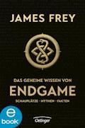 Das geheime Wissen von Endgame - James Frey - E-Book