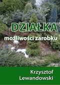 Działka. Możliwości zarobku - Krzysztof Lewandowski - ebook