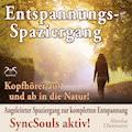 Entspannungsspaziergang: Angeleiteter Spaziergang zur kompletten Entspannung – SyncSouls aktiv - Franziska Diesmann - Hörbüch