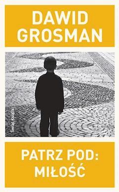 Patrz pod: Miłość - Dawid Grosman - ebook