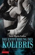 Hard & Heart 1: Die Entführung des Kolibris - Sara-Maria Lukas - E-Book