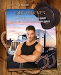 Der Trucker - Wenn sich das Herz nach mehr als einem Menschen sehnt - Norma Banzi - E-Book
