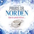 Praxis Dr. Norden 3 - Arztroman - Patricia Vandenberg - Hörbüch