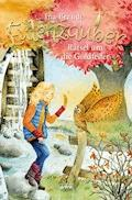 Eulenzauber (5). Rätsel um die Goldfeder - Ina Brandt - E-Book