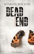 Dead End - Lacey Flint 2 - Sharon Bolton - E-Book