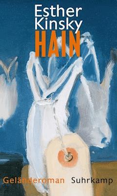 Hain - Esther Kinsky - E-Book