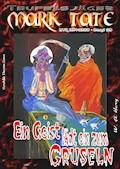 TEUFELSJÄGER 028: Ein Geist lädt ein zum Gruseln - W. A. Hary - E-Book