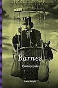 Wymiary życia - Julian Barnes - ebook