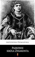 Paziowie króla Zygmunta - Antonina Domańska - ebook