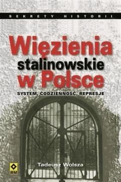 Więzienia stalinowskie w Polsce. System, codzienność, represje - Tadeusz Wolsza - ebook