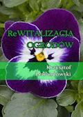 Rewitalizacja ogrodów - Krzysztof Lewandowski - ebook