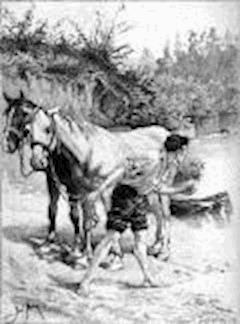 Les Paysans - Honoré de  Balzac - ebook